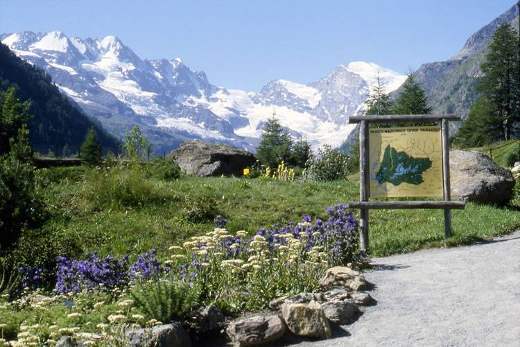 Giardino botanico alpino Paradisia - Cogne     - Visit Italy