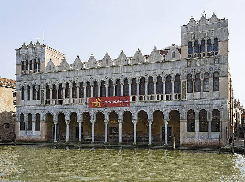 Museo Civico di Storia Naturale - Venezia  - Visit Italy
