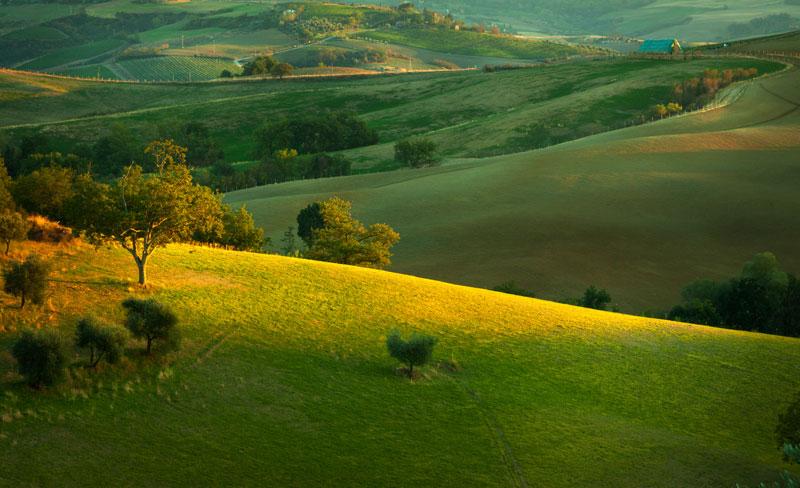 Sunset of Tuscany Fields