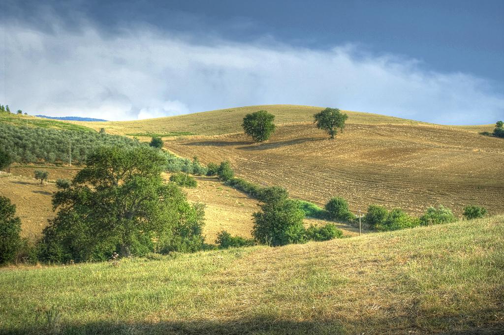 Colline della Maremma -  - Visit Italy