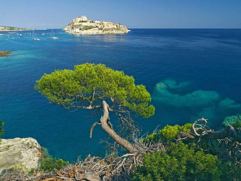 Vista magnifica delle Isole Tremiti - Isole Tremiti - Visit Italy