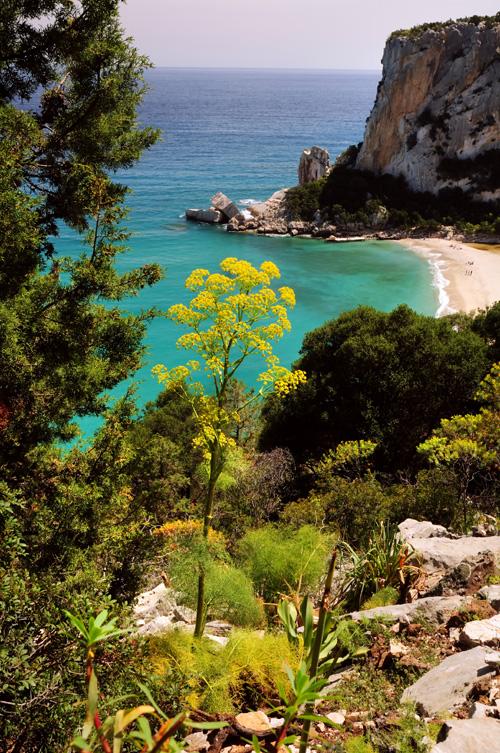 Cala -  - Visit Italy