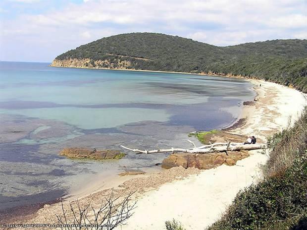 Spiaggia Cala Violina