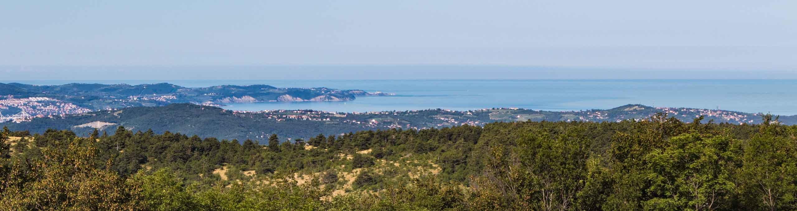 San Dorligo della Valle, Trieste e Carso