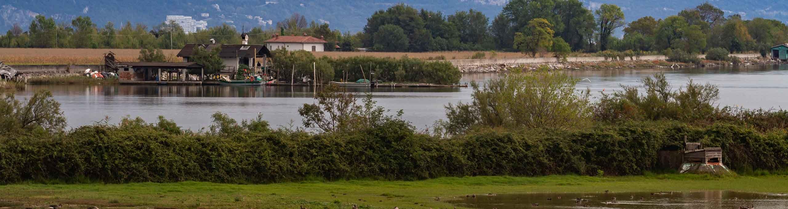 Staranzano, Gorizia Collio e Monfalcone, Riserva Naturale Regionale della Foce dell'Isonzo Isola della Cona