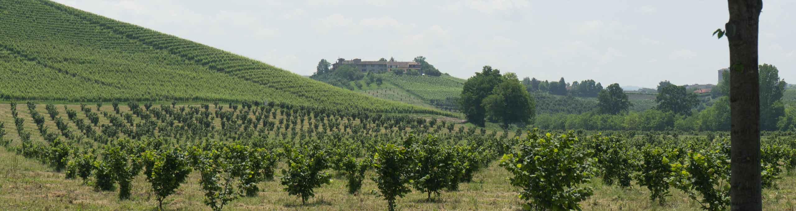 Castelletto Uzzone, Valli Bormida e Uzzone
