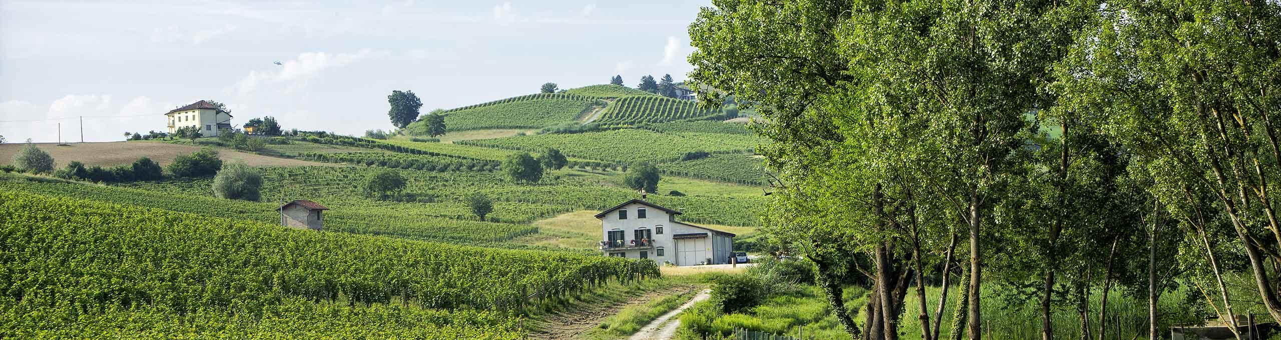 Nizza Monferrato, Monferrato Astigiano