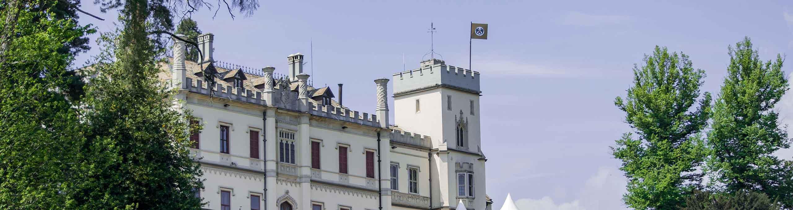 Oleggio, Colline Novaresi, Castello di Oleggio