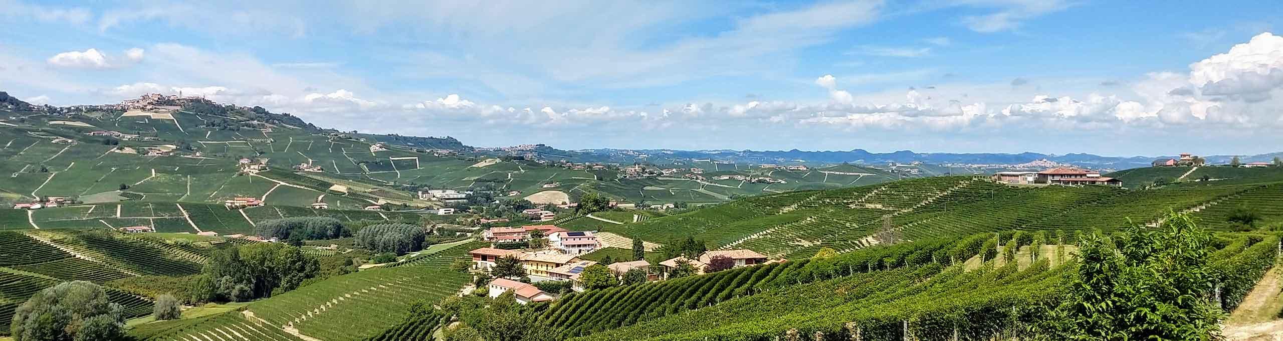 Serralunga D'Alba, zona bassa delle Langhe
