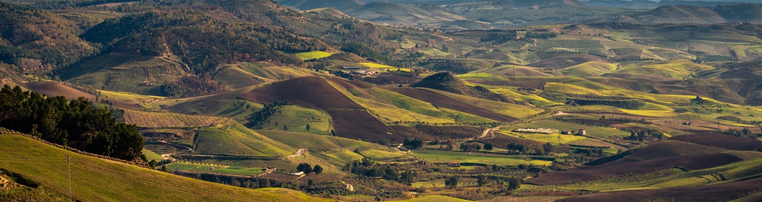 Campagna tra Caltanissetta e Mazzarino