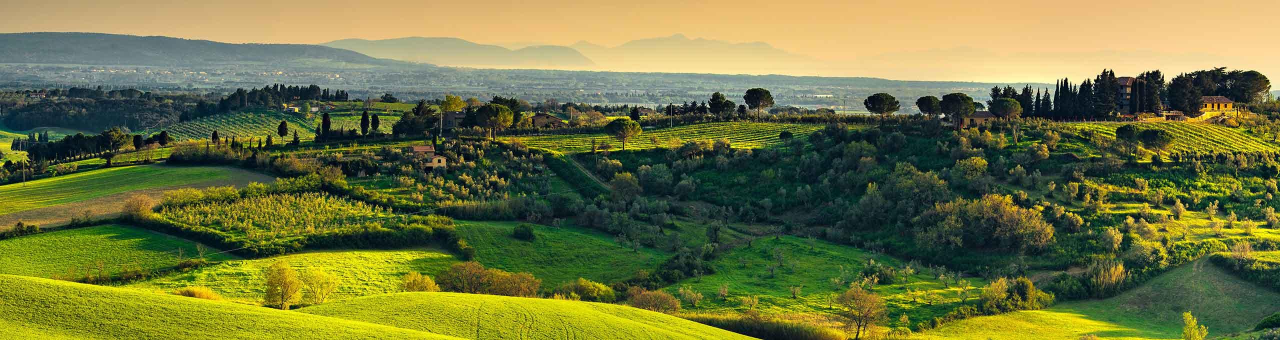 Bibbona, Costa degli Etruschi