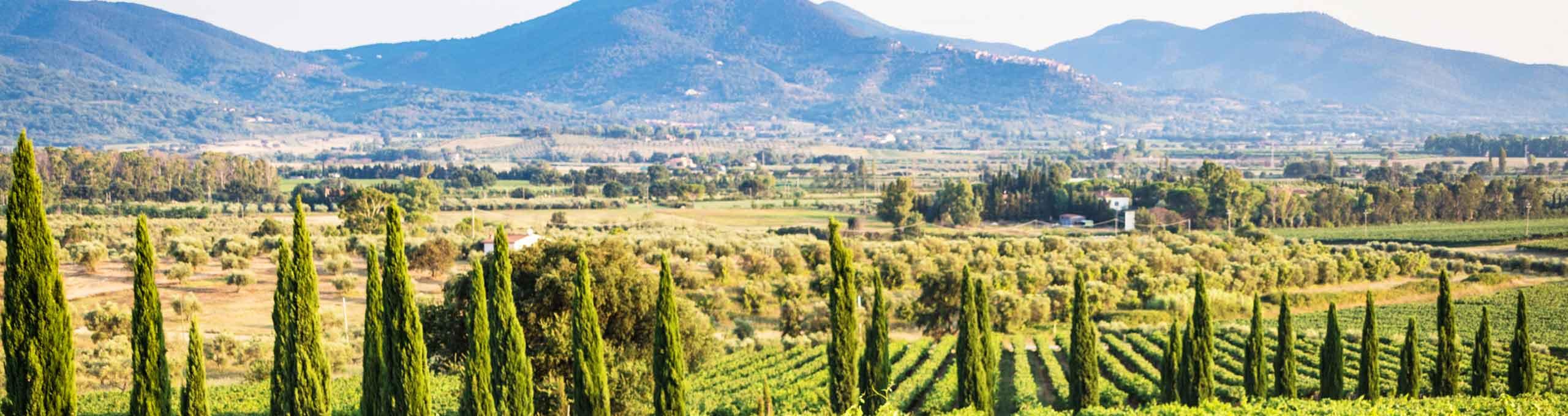 Gavorrano, Maremma Toscana
