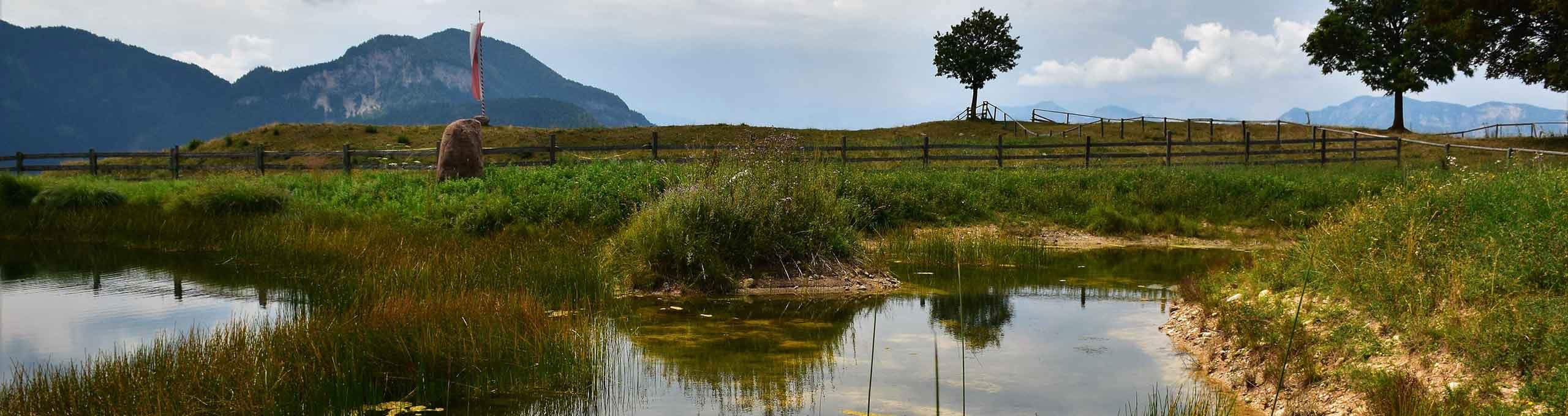 Parco Naturale di Trodena