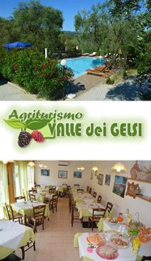 Agriturismo Valle dei Gelsi - Peschici